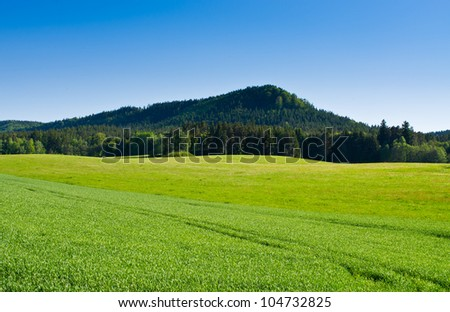 Fresh spring scenery with hill