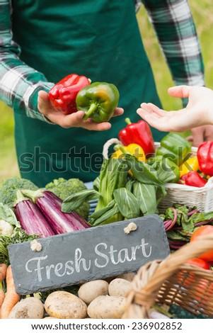 Fresh start against fresh vegetables at farmers market