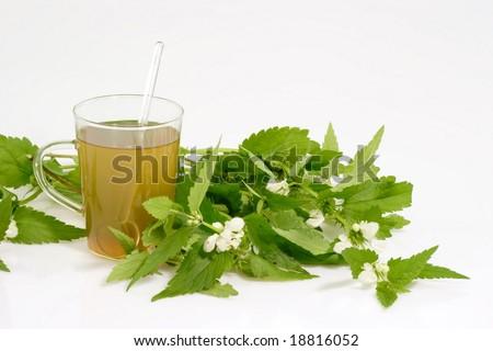 Fresh Stinging nettle tea on bright background