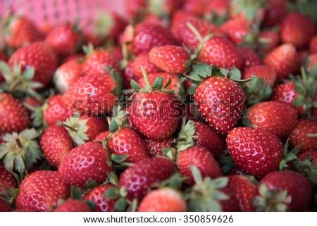 Fresh Strawberry Background ,focus center #350859626