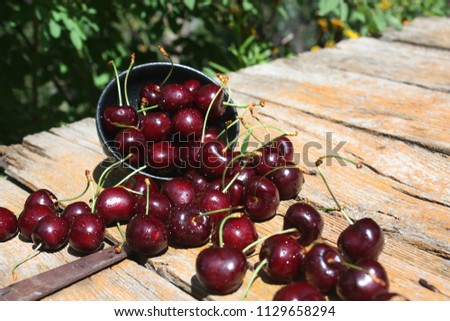 Fresh summer Cherries #1129658294