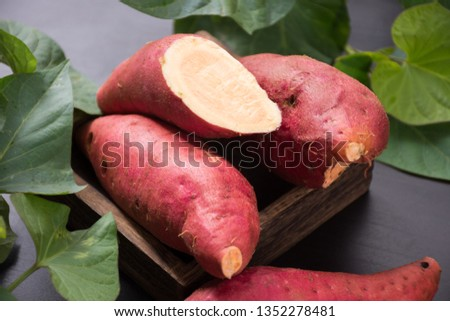 Fresh sweet potato sweet potato #1352278481