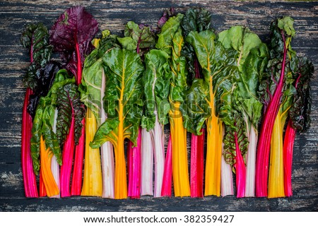 Fresh swiss rainbow chard