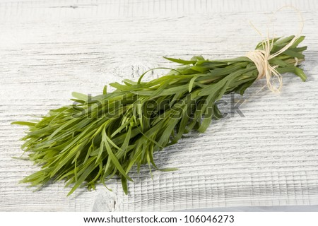 Fresh tarragon herb bunch isolated on a white table.