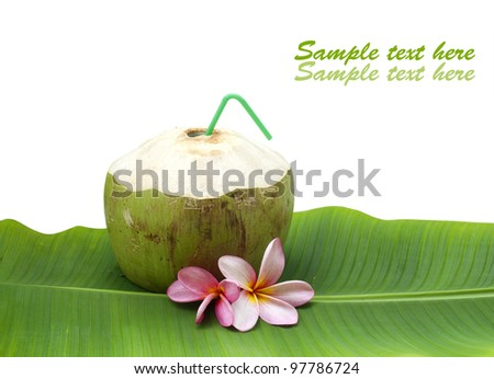 fresh tender green coconut drink on white background with sample text