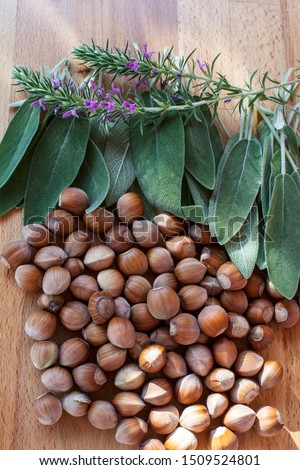 Fresh thyme, fresh sage. Fresh hazelnuts. Organic foods. #1509524801
