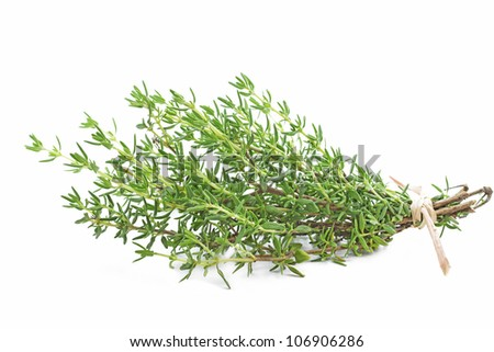 Fresh thyme herb on white background - stock photo