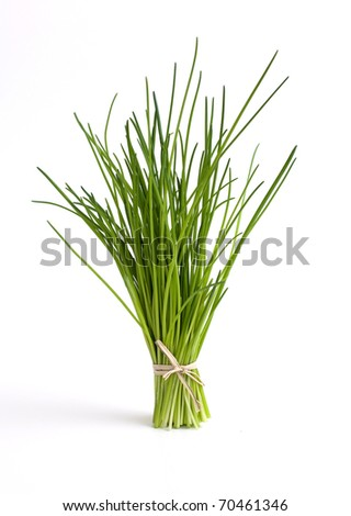 fresh tied chives standing on white background