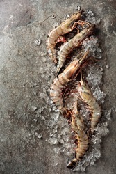 Fresh tiger prawns with crushed ice on rough background, top view with copy space.