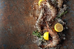 Fresh tiger prawns with lemon, rosemary and crushed ice, top view with copy space. Rusty metal background.