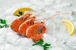 Fresh tiger shrimps on ice. Seafood concept.
