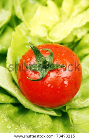 Fresh tomato and lettuce