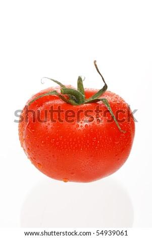 fresh tomato on the white background