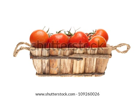 fresh tomatoes on a vine in a wooden basket on a white background