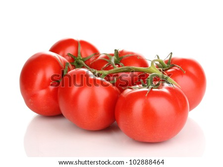 Fresh tomatoes on branch isolated on white