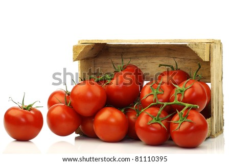 fresh tomatoes on the vine in a wooden crate on a white background