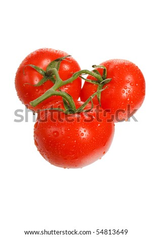 fresh tomatoes on the white background