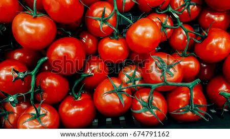 fresh tomatoes. red tomatoes background. Group of tomatoes #674791162