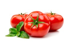 Fresh tomatoes with basil isolate