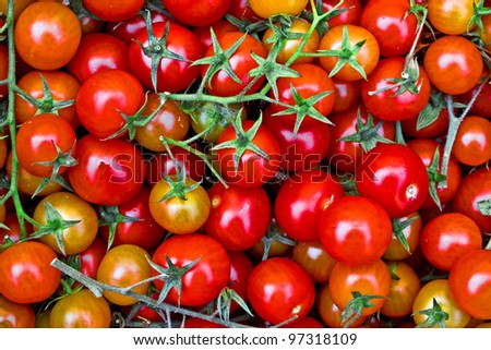 Fresh tomatos background at a market in Rome