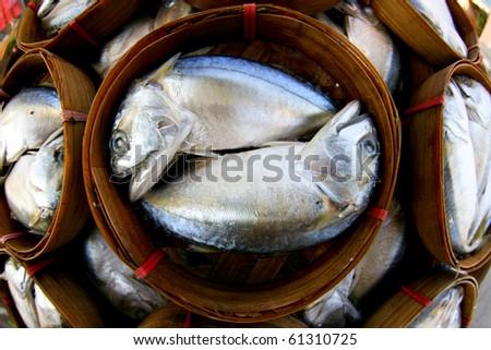 Fresh tuna in market, thailand