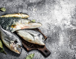 Fresh unprepared fish. On a rustic background.