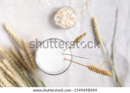 Fresh vegan oat milk in big glass. Closeup, white wooden background. Healthy vegetarian food concept.  Oatmeal in a bowl and spica to illustrate raw ingredients. Top view, closeup  #1549698044