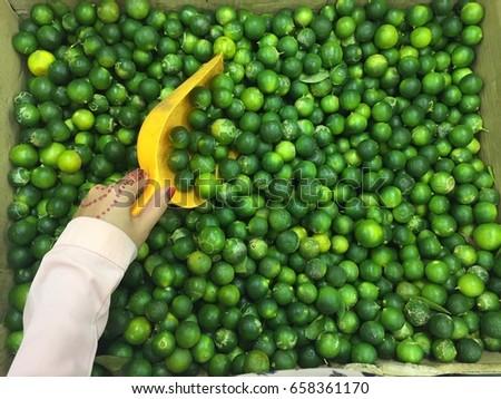 Fresh vegetables #658361170
