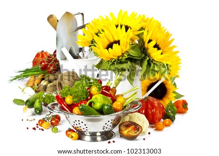 Fresh vegetables, flowers and garden tools over white