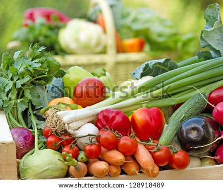 Fresh vegetables in the crates and basket