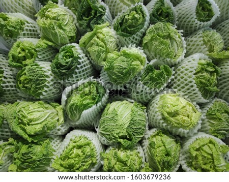 Fresh vegetables in the fresh market