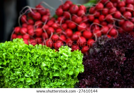 Fresh vegetables lettuce & radish - stock photo