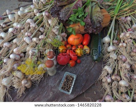 fresh vegetables on a wooden table.garlic,tomatoes and various vegetables. #1465820228