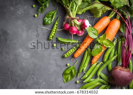 Fresh vegetables on rustic concrete background. Carrot, beet, radish, green pea, herbs. Harvest/gardening concept. Healthy food. Vegetarianism. Clean eating. Space for text. Making salad ingredients #678314032