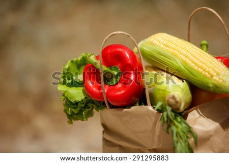 Fresh vegetables organic food, various colorful raw vegetables, Fresh Bio Vegetable in  package Over Nature Background, organic corn, pepper and green salad, healthy eating, selective focus