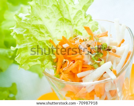 fresh vegetables salad with sprouts