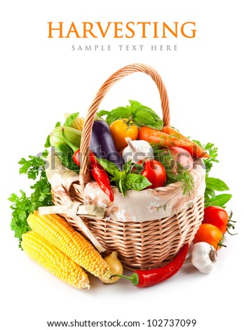 fresh vegetables with green leaves in basket isolated on white background