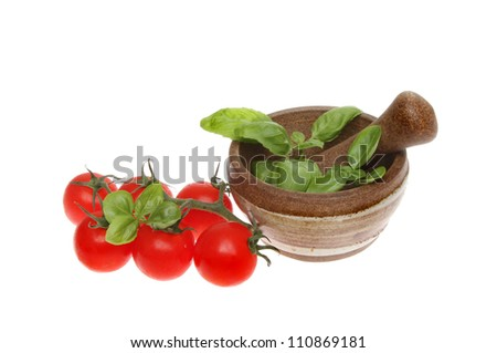 Fresh vine tomatoes next to a pestle and mortar with basil isolated against white