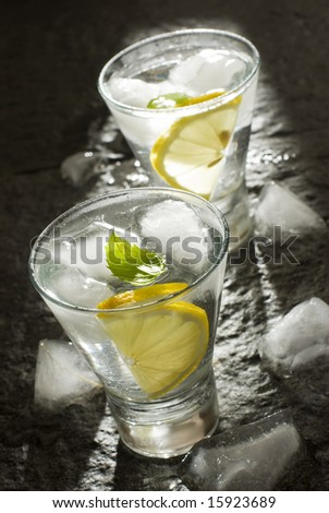 fresh vodka with lemon and ice close up