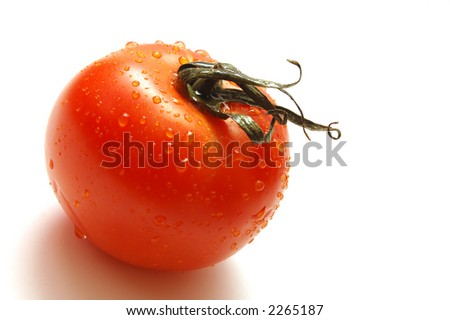 Fresh wet tomato isolated on white background. Shallow depth of field