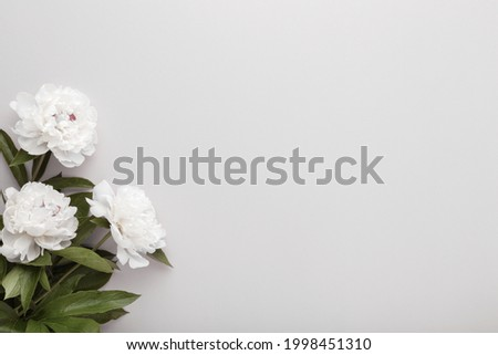 Fresh white peony flowers on light gray table background. Empty place for emotional, sentimental text, quote or sayings. Closeup. Foto d'archivio ©