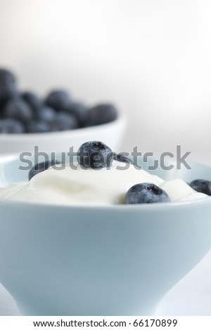 Fresh yoghurt with bleberry in a blue bowl