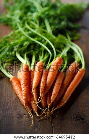 Fresh Young Carrots