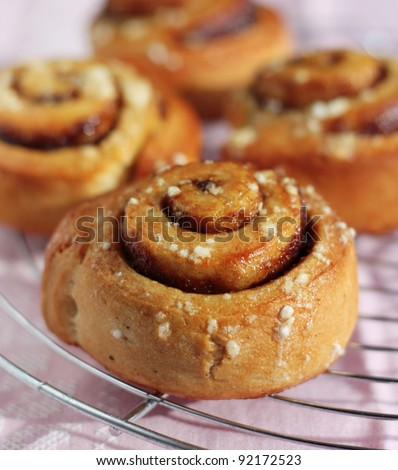 Freshly baked cinnamon rolls on a pink background. - stock photo
