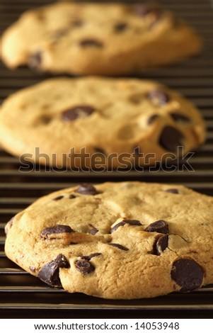 Freshly baked cookies on cooling rack