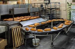 freshly baked hot bread loafs on the production line