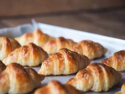 Freshly baked mini croissants on baking tray