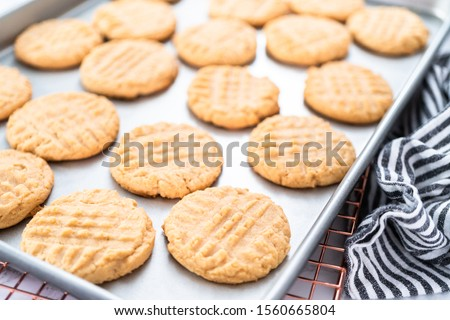 Freshly baked peanut butter cookies on a baking sheet. #1560665804