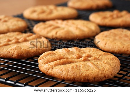 Freshly baked peanut butter cookies on cooling rack.  Macro with extremely shallow dof.  Selective focus limited to center of closest cookie.