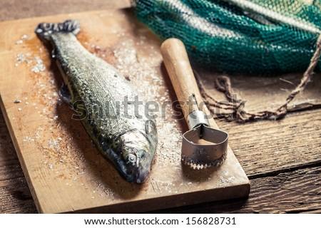 Freshly caught fish for dinner